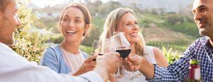Hunter Valley Wine Tour