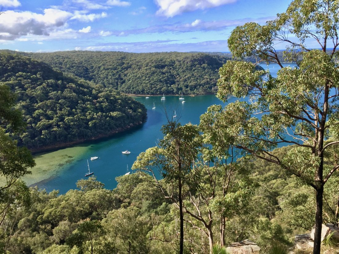 ku ring gai national park