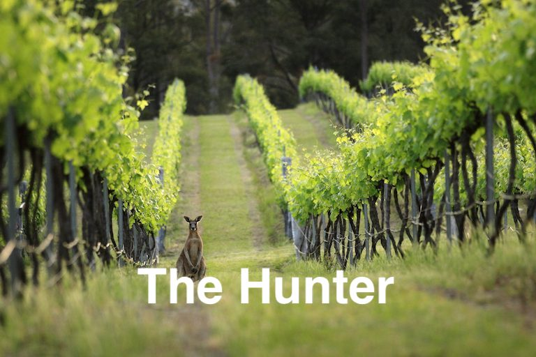 Private Hunter Valley Tours